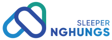 logo-nghungs-sp-c3